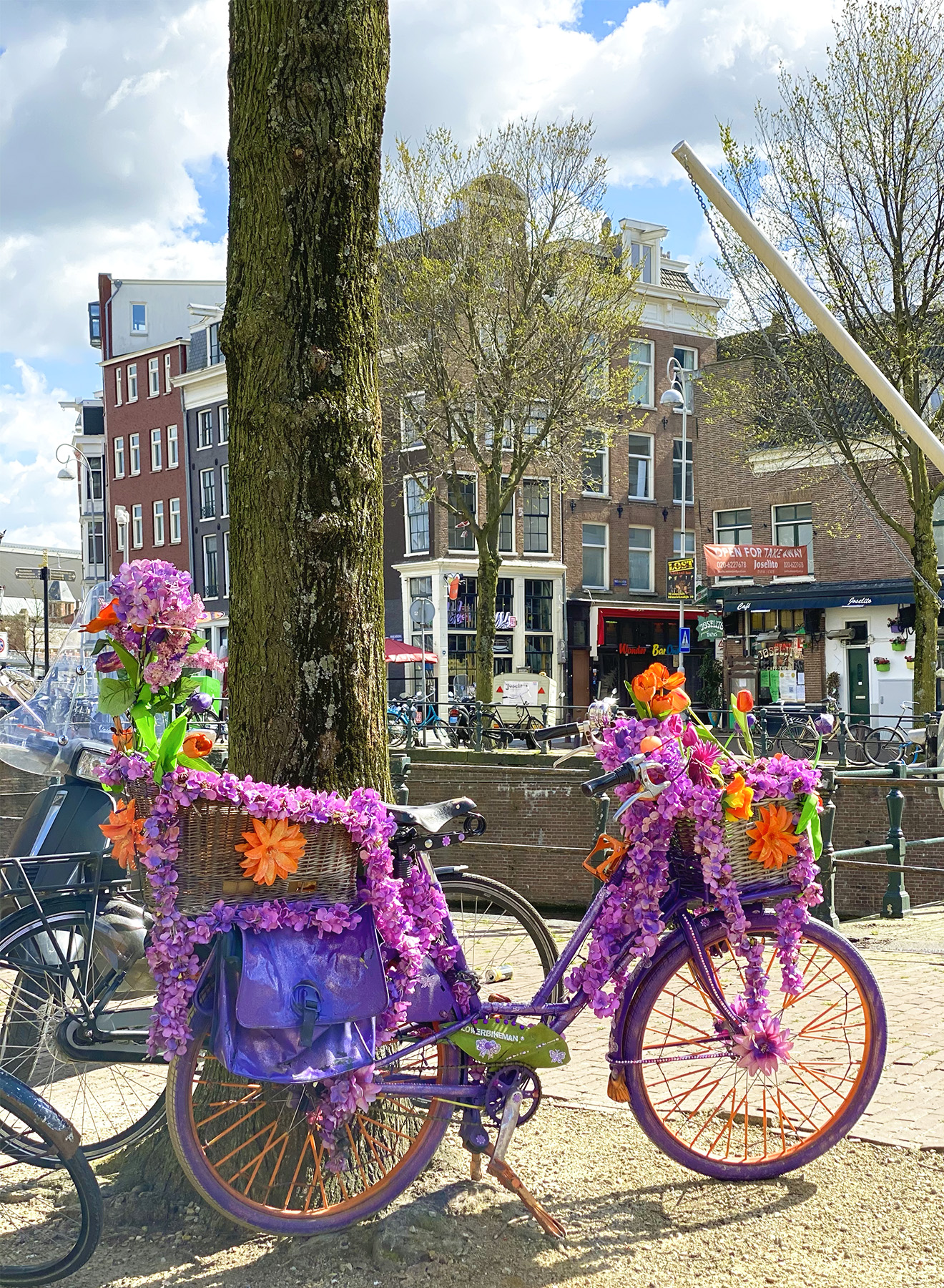Bicycle covered in flowers on the streets in Amsterdam