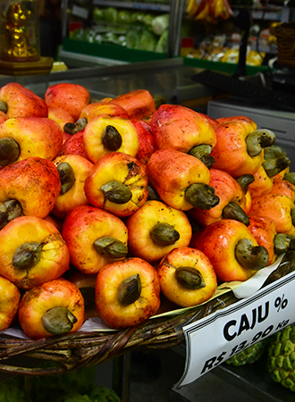 Caju a typical fruit from Brazil