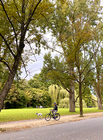 A man cycles with his dog at Vondelpark