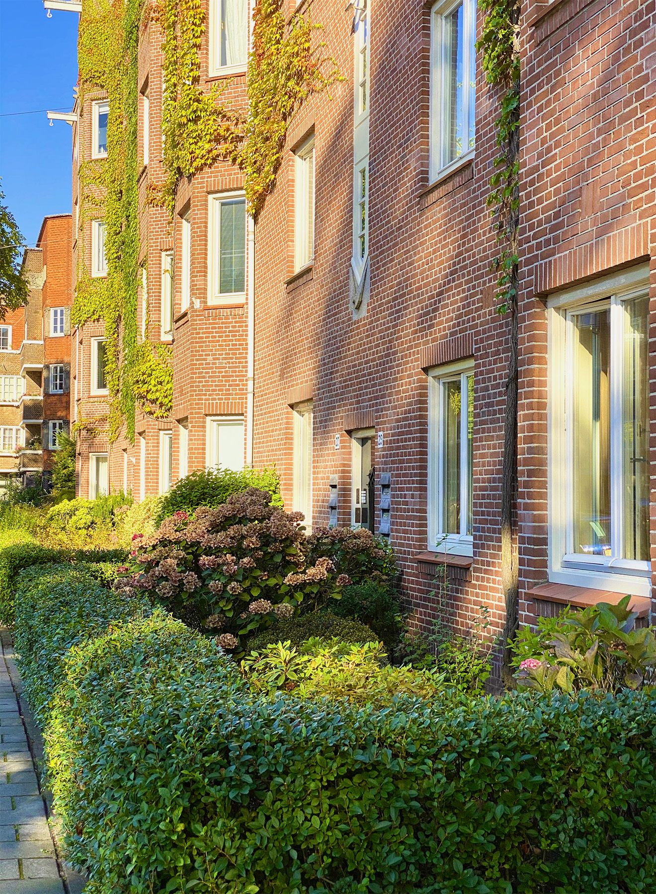 Colourful streets of Amsterdam during springtime