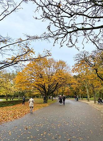 Vondelpark during autumn time in Amsterdam